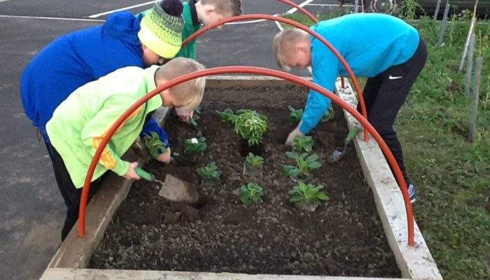 eco children planting