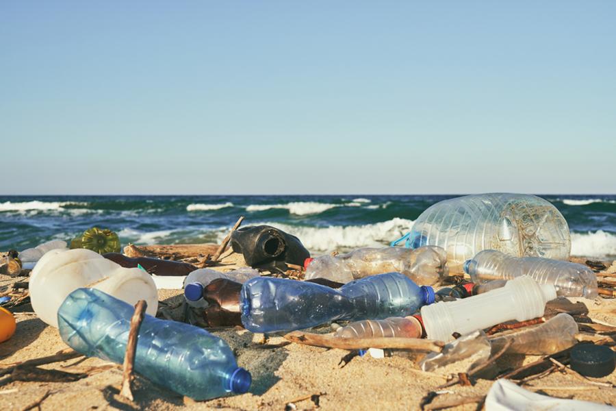 More Plastic Than Plankton
