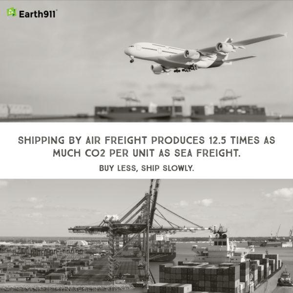 We Earthlings: Buy Less, Ship Slowly
