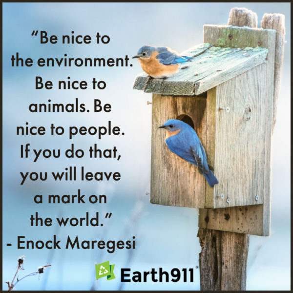 Earth911 Inspiration: Be Nice to the Environment