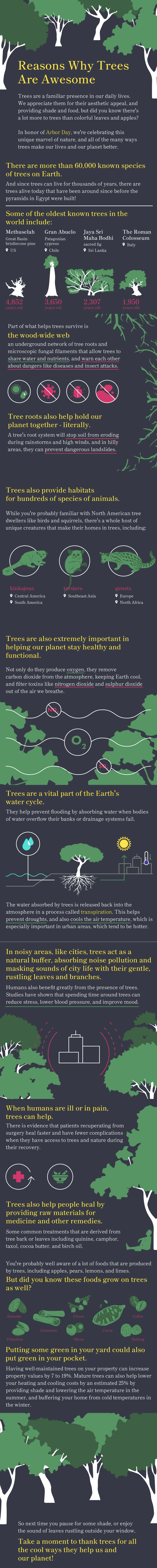 Infographic: Reasons Why Trees Are Awesome