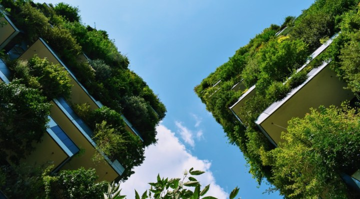 5 Tips for Environmentally Responsible Construction in the Eco-Conscious World