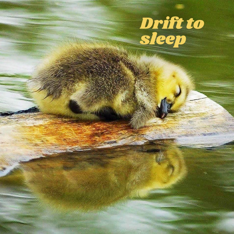 Drift to sleep