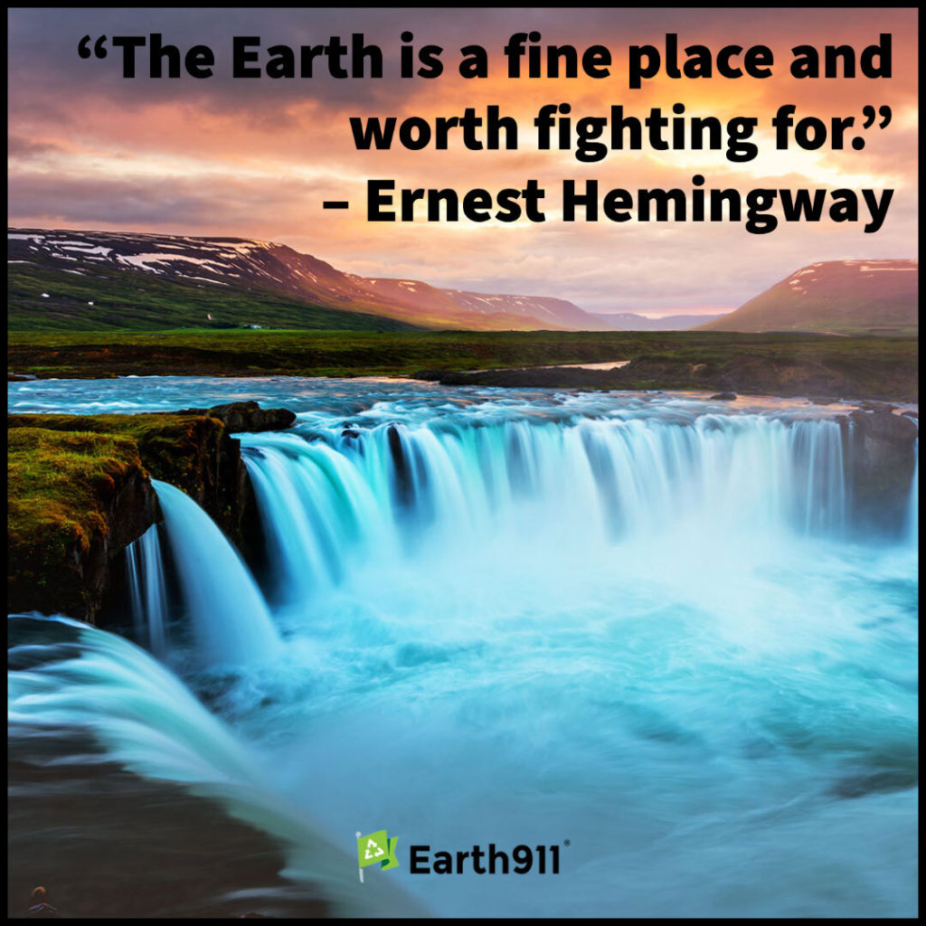 Earth911 Inspiration: Earth Is Worth Fighting For