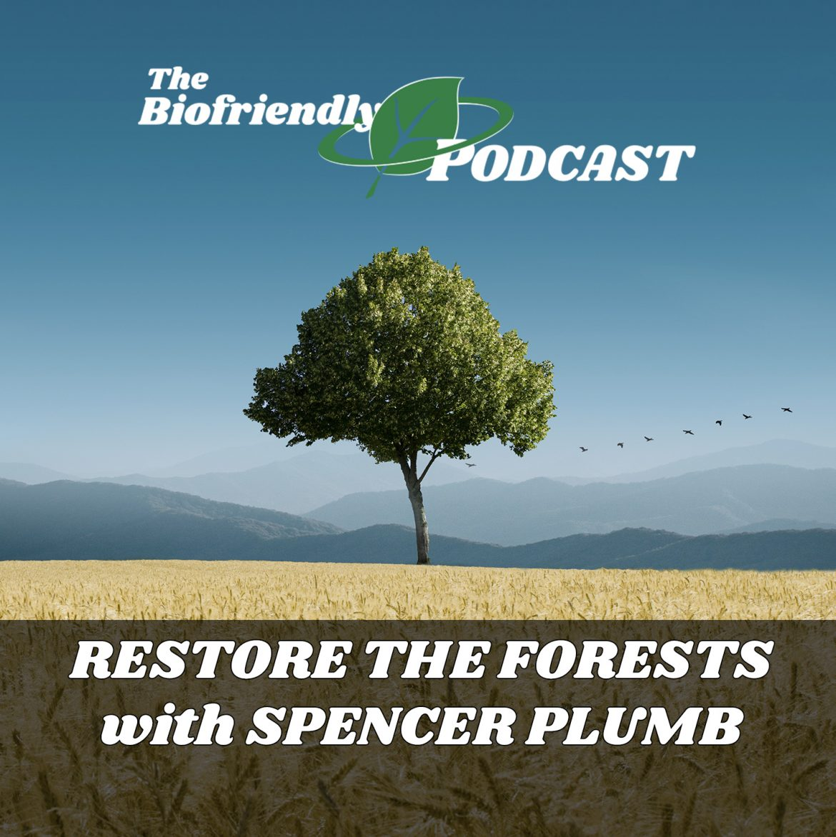 Restore the Forests with Spencer Plumb