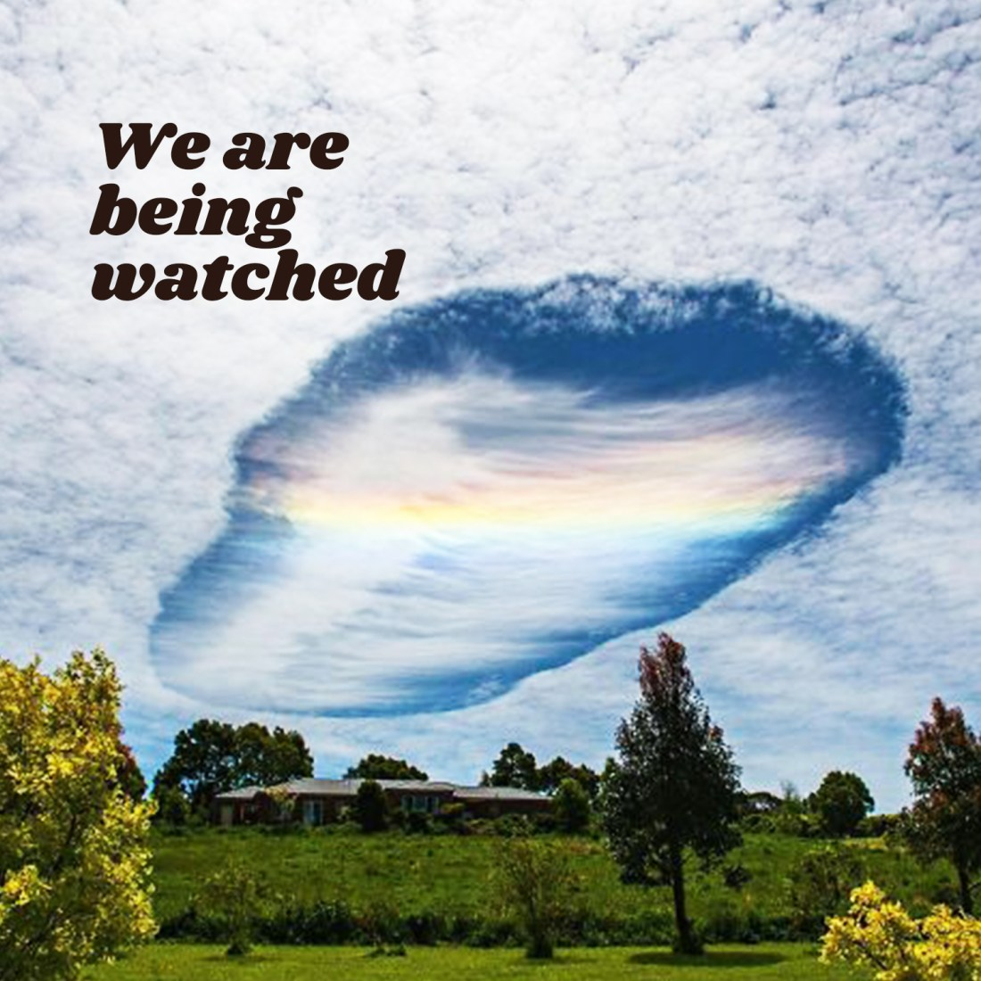 We are being watched