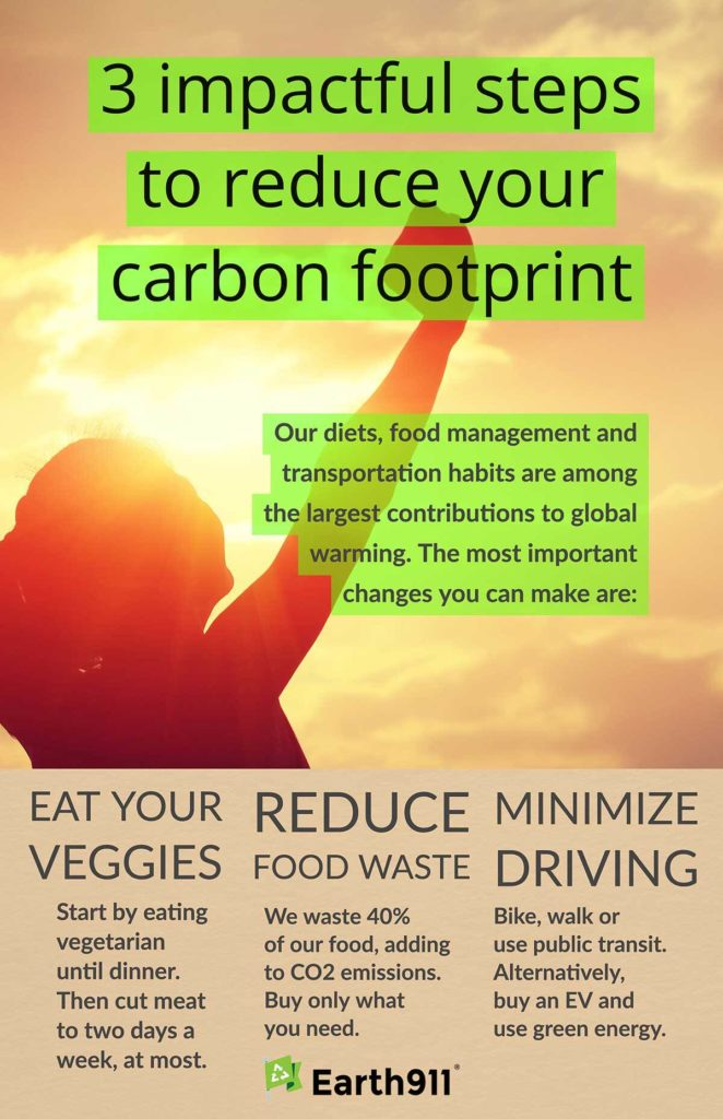 We Earthlings: 3 Ways To Reduce Your Carbon Footprint